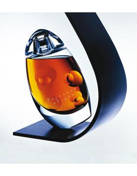Hennessy Ellipse