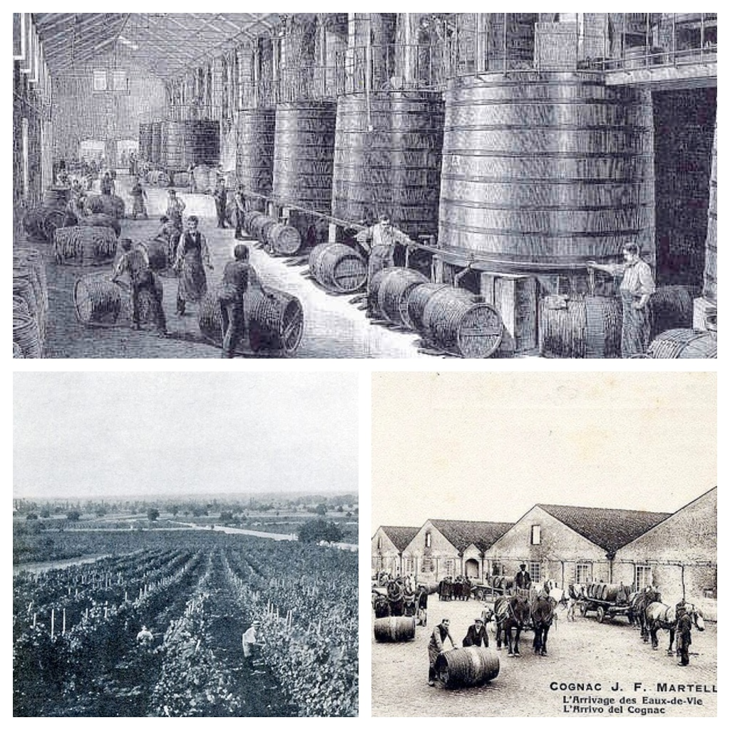 cognac-brandy-history