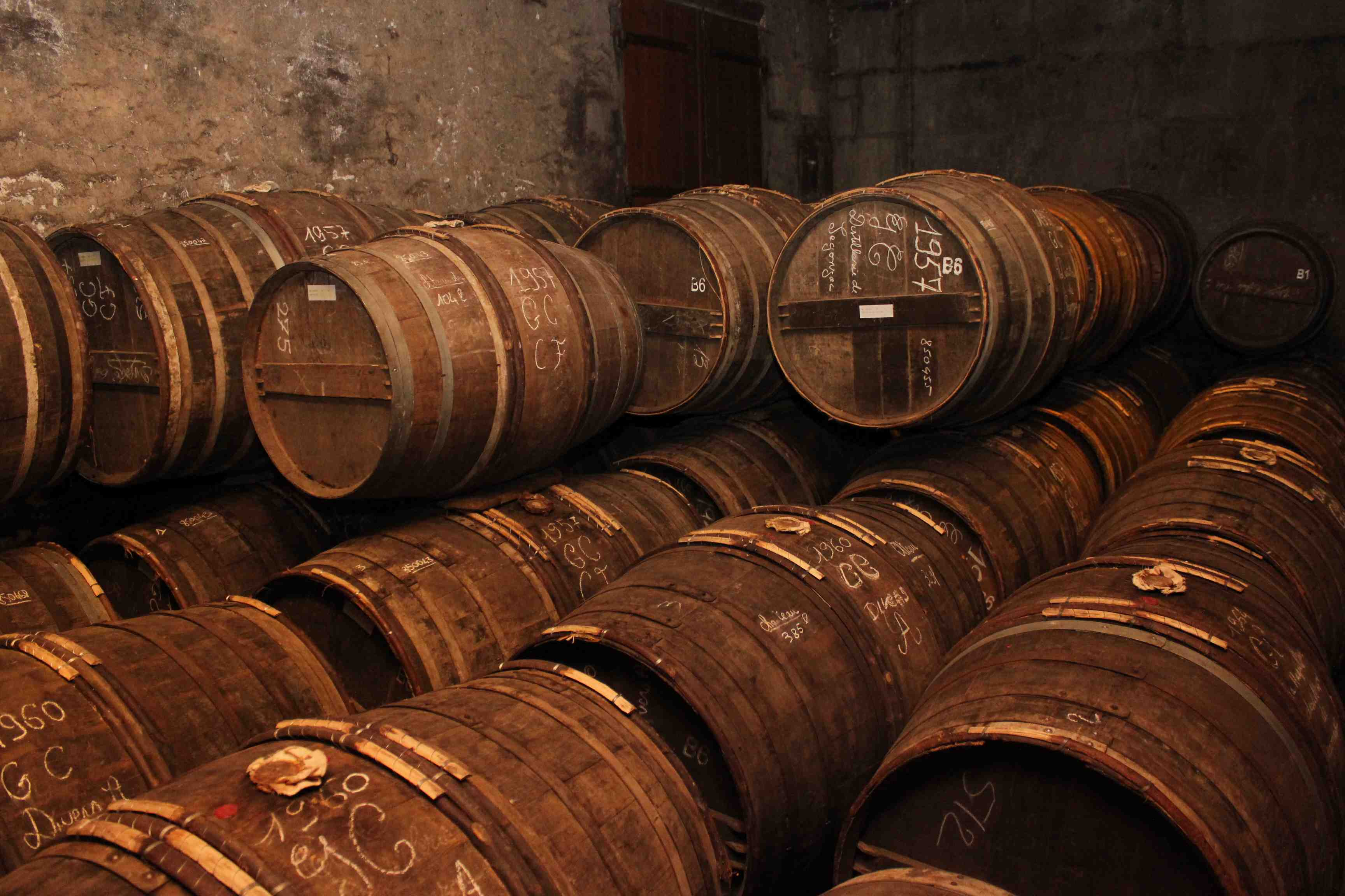 Oak casks