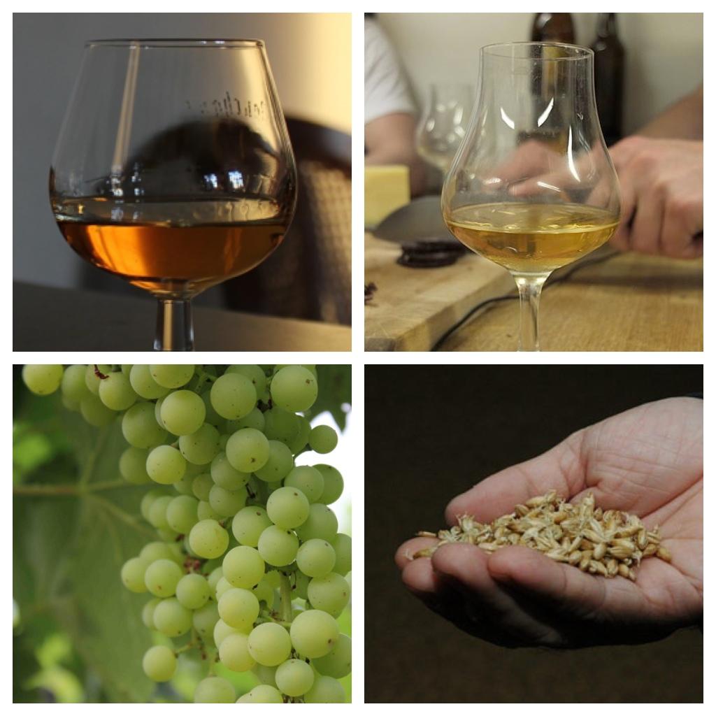cognac-vs-whiskey