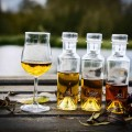 Cognac-05-thumbnail