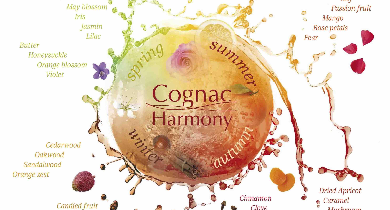 Cognac-aroma-wheel-crop